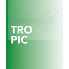 Aroma Tropic Bombo eLiquids